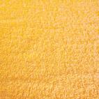 Eponge de coton Oekotex Jaune Or