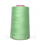 Polyester Serger and sewing Thread Cone (4573m) Light Green