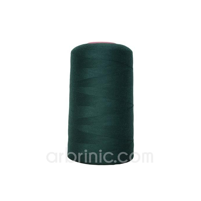 Polyester Serger and sewing Thread Cone (4573m) Chrome Green