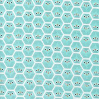Organic cotton Flannel print Dolittles Owl Cloud9