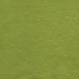 Micro-éponge de coton Bio GOTS 290g Vert Gazon