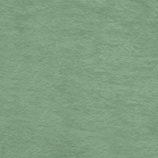Cotton Micro-terry Organic GOTS 290g Celadon Green