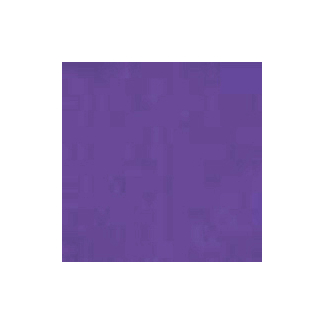 Organic cotton interlock Purple