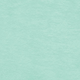 Micro-éponge de coton Bio GOTS 290g Vert d'eau (coupon 1m)