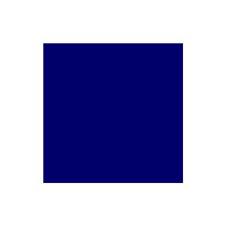 PUL USA Bleu marine (par 10cm)