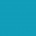 PUL USA Bleu turquoise (par 10cm)