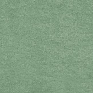 Cotton Micro-terry Organic 320g Celadon Green