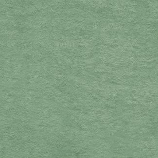 Micro-éponge de coton BIO 320g Vert Celadon