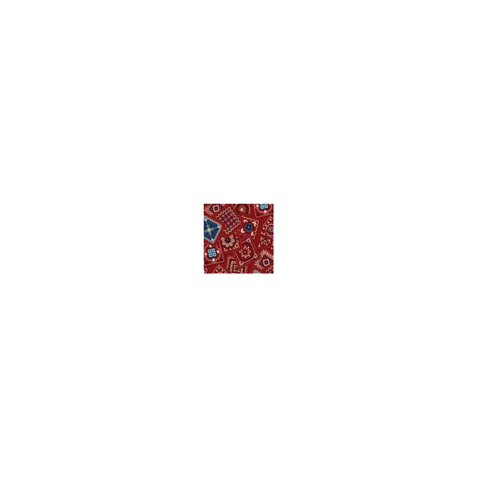 Coton imprimé Bandana Michael Miller (par 10cm)