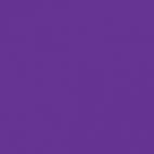 Single side Microfleece Oekotex Purple
