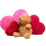 Peluche : Minky, Teddy