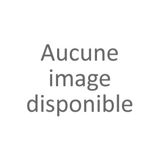 Etiquettes déco Canards - Lot de 10